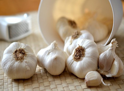 Garlic suppliers in China